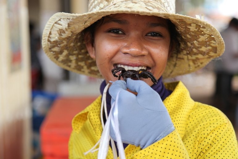 Eating Insects Could Stem Malnutrition in Rural Cambodia