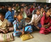 Three Groups Combine Fun with Education in Latin America and India