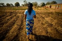 What's the Difference Between Famines and Droughts?