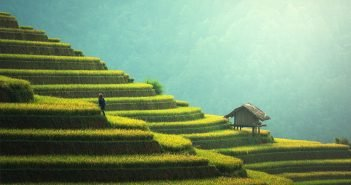 Sustainable Agriculture in China