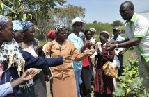 Conservation Agriculture in East Africa