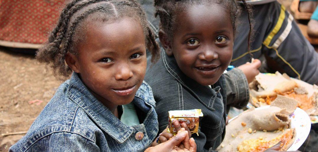 achieving ethiopias development goals - HD3594×2514