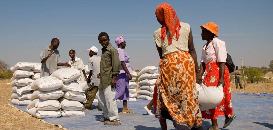 How Does World Food Programme Face Major Emergencies Borgen