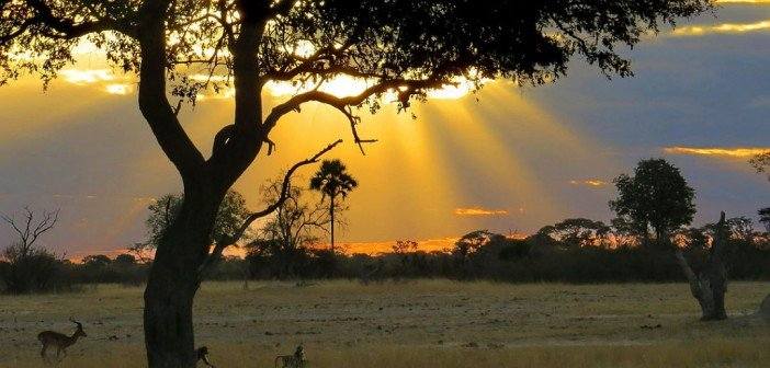 Climate Change and Poverty in Zimbabwe