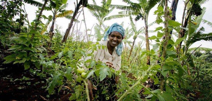 Global Food Security Act