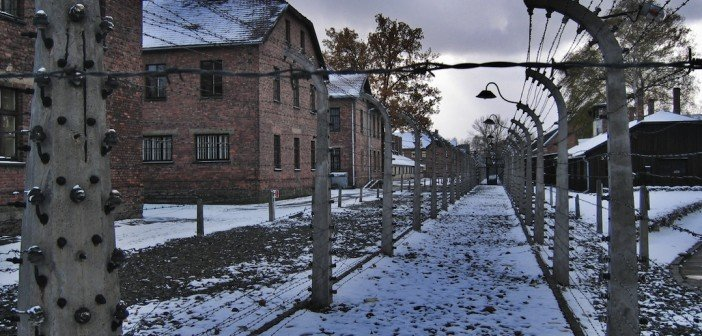 Polish Holocaust survivors