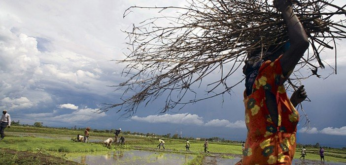 Global Resilience Partnership
