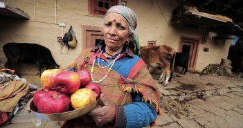 Agriculture_India