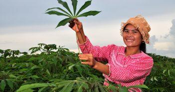 Sustainability _Farmers