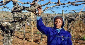 Farmers in Africa