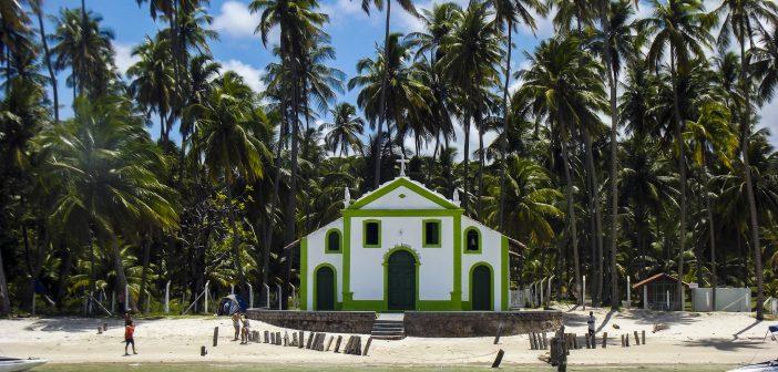 Threat of Zika in Brazil Begins to Decrease