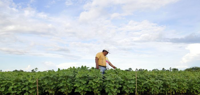How the House Agriculture Committee Affects Foreign Aid