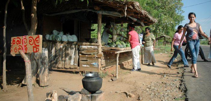 Causes of Poverty in Sri Lanka