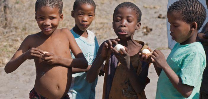 Education in Botswana Remains Stellar