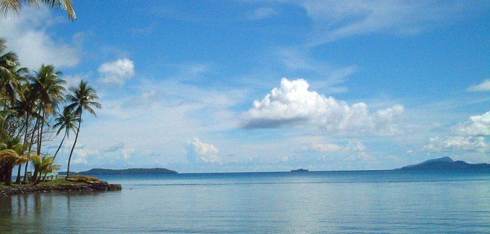 Common Diseases in Micronesia