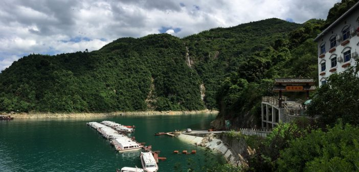 Turning the Tide: Chinese Environmental Development Efforts
