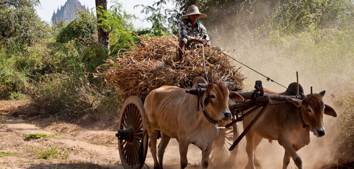 Improving Business Environments in Burma