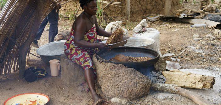 Women's Empowerment in Benin
