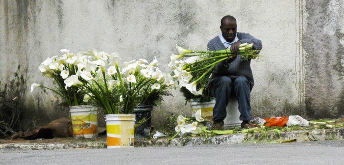 Entrepreneurship in Brazil's Favelas