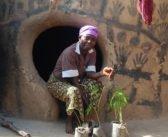 Genetically Modified Organisms in Ghana