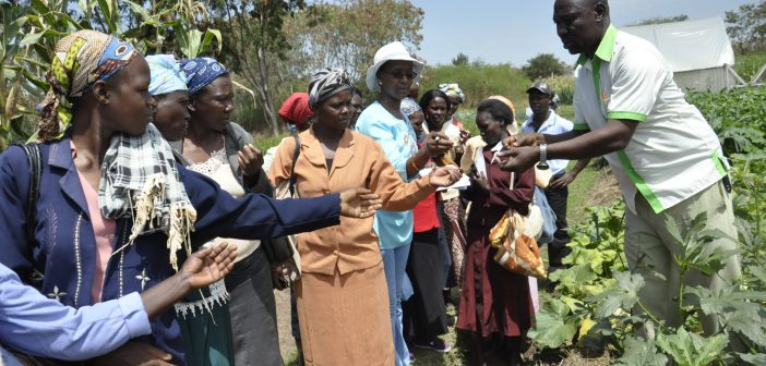 Nuclear Technology in Africa's Agriculture Industry