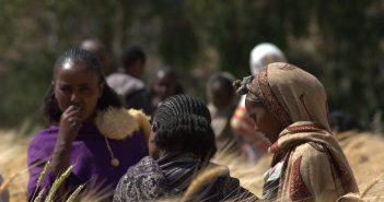 Fair Trade Africa