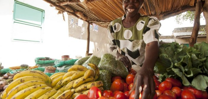 The Fight Against Global Hunger