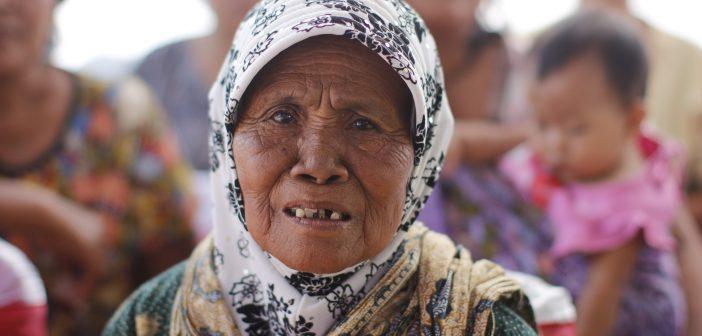 Dengue Fever in Indonesia