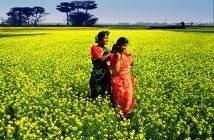 Digital Wages in Bangladesh