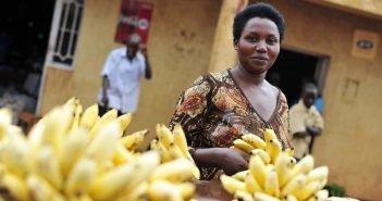 Rebuilding After the Rwandan Genocide