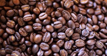 The Well builds water wells in Africa's impoverished communities through coffee profits