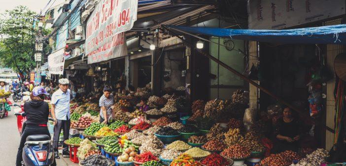 The Rise of Vietnam
