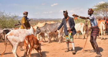 UNPD creates a weather app to help Somalian pastoralists