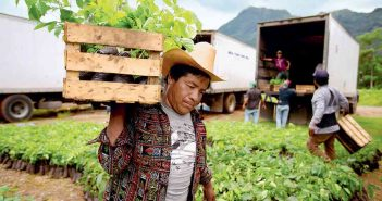 sustainable food production fights poverty