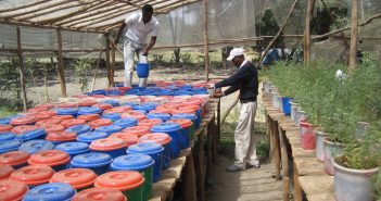 Local Sourcing in Africa