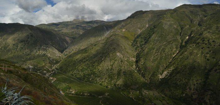 Combatting COVID-19 in Peru
