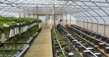 Making Organic Agriculture Accessible to Low-Income Farmers
