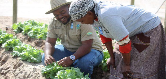 UNDP program in Botswana