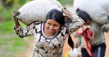 How the Coffee Industry is Addressing Global Poverty