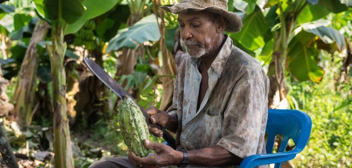 Investing in Central America