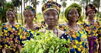 sustainable agriculture in Africa
