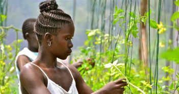 Kenyan Farmers Affected by COVID-19