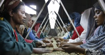 Empowering Women in Ethiopia's Coffee Sector