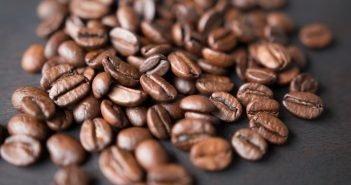 The Struggle Against Modern-day Slave Labor on Brazilian Coffee Farms