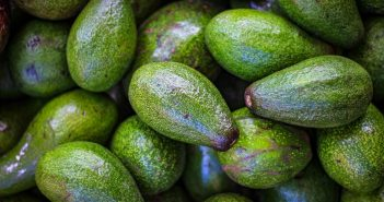 How Avocados Can Reduce Poverty for Tanzanian Farmers